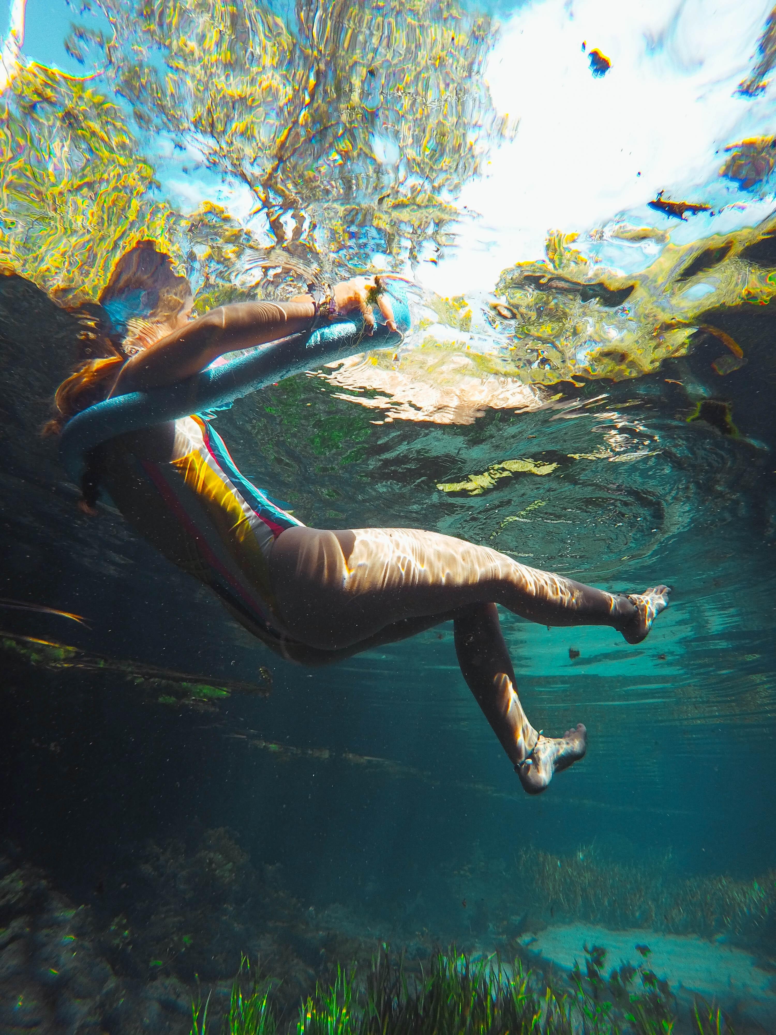 Mataranka : Bitter Springs