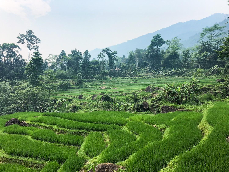 formalités pour visa au vietnam