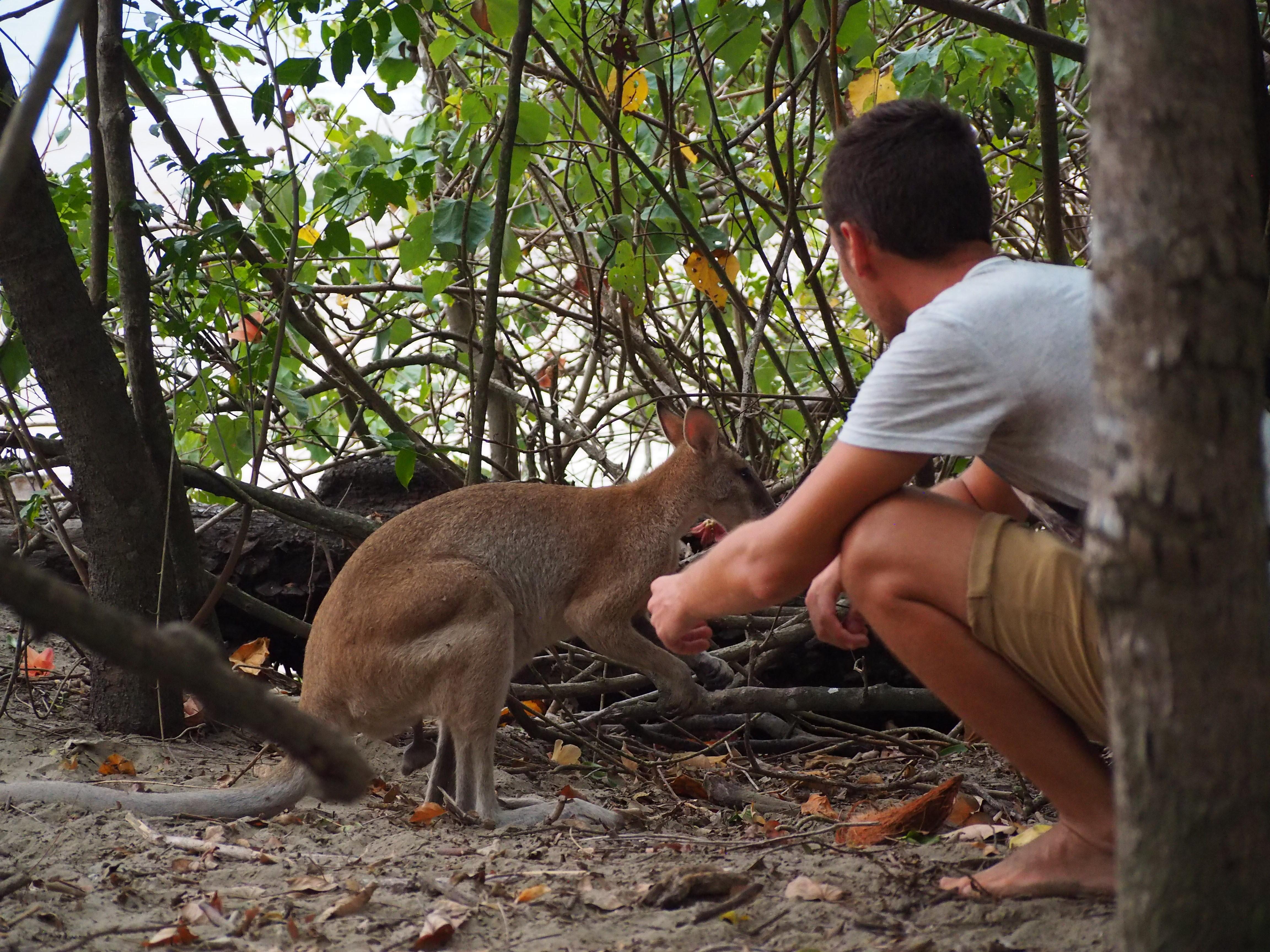 Vous partez en Australie : voici nos idées bons plans !