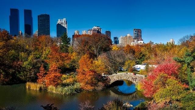 Se promener à Central Park - New York
