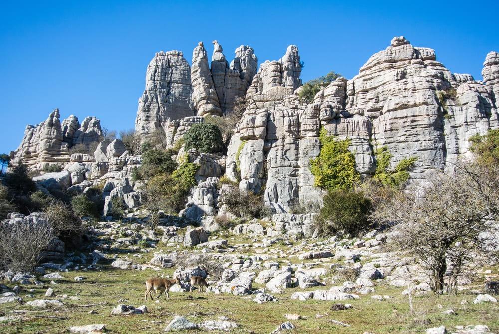 La réserve naturelle d'El Torcal