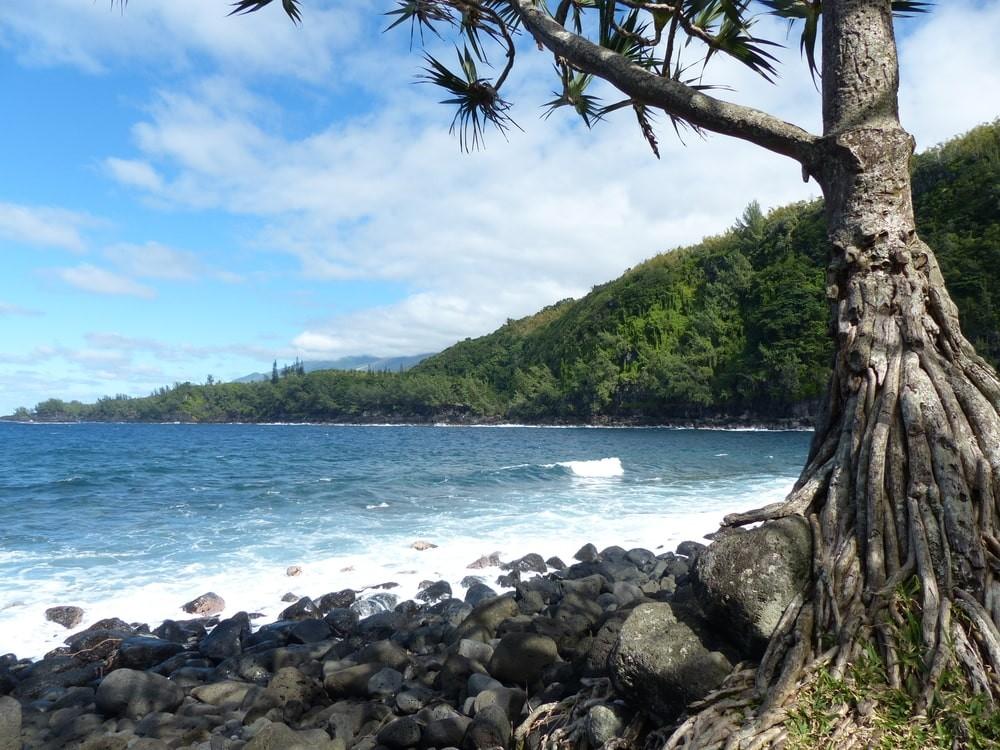 Météo et climat à la Réunion