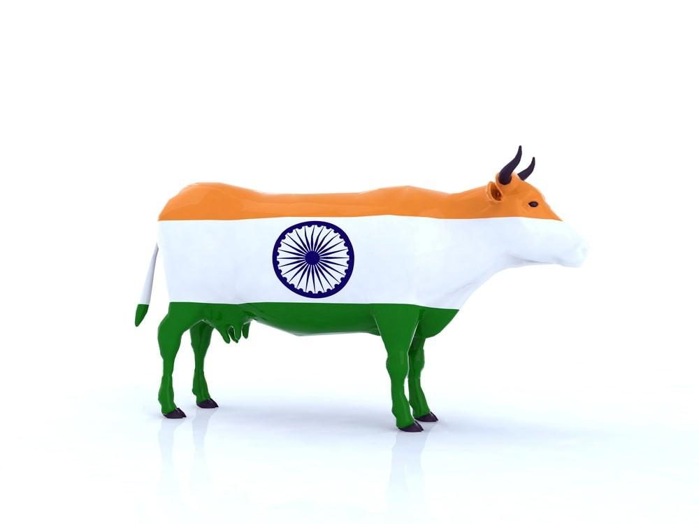 Totems et animaux emblématiques des pays : le top 50