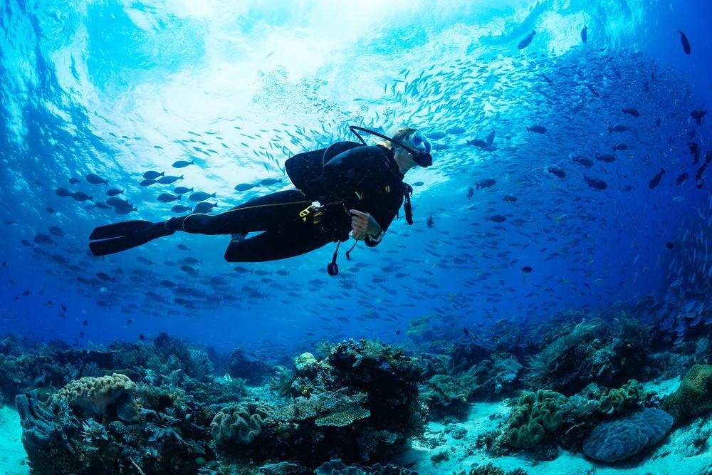 Plongée sous-marine dans le parc Sommerso di Baia